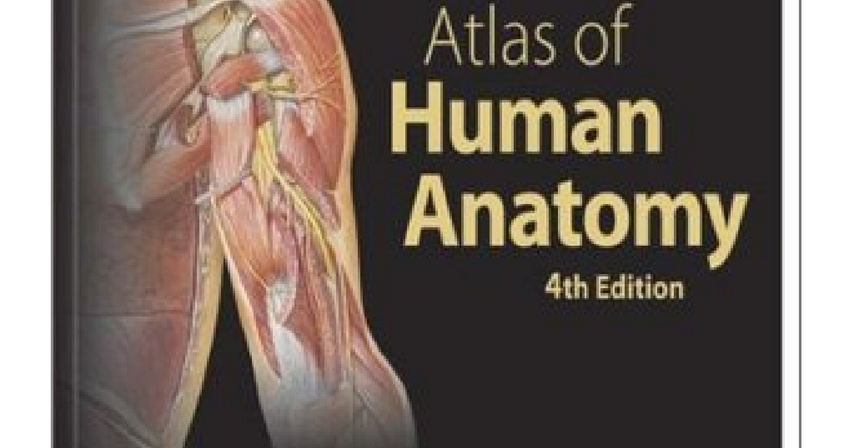 Atlas Of Human Anatomy By Frank H Netterpdf Google Drive
