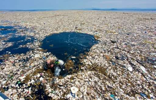 Image result for rubbish in the ocean