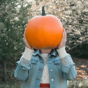 is pumpkin a fruit or vegetable