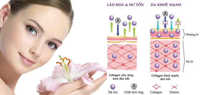 nhung-benh-khong-nen-uong-collagen