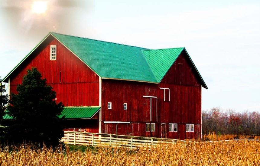Mái tôn gia tăng khả năng chống nóng cho trang trại
