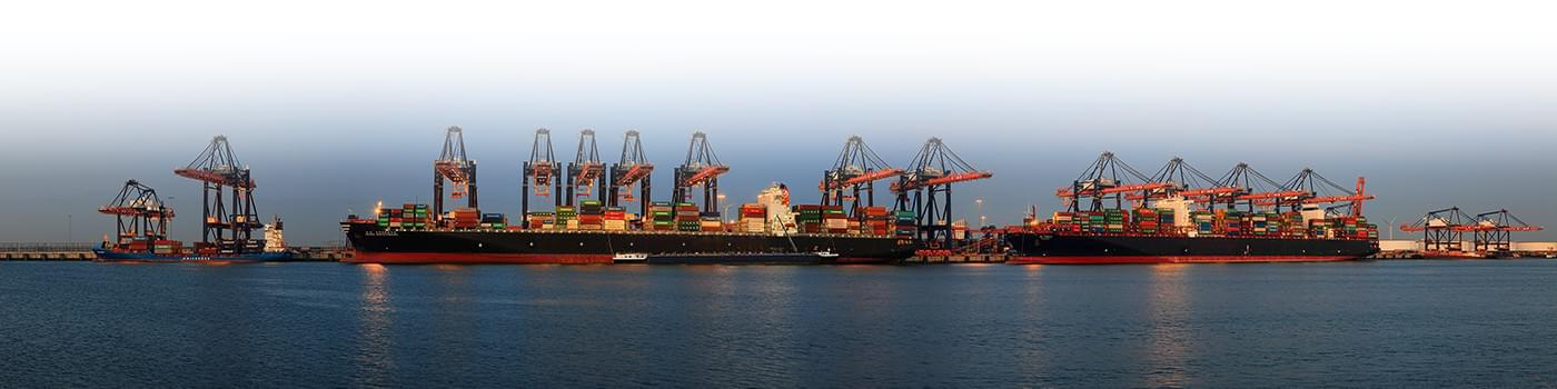 Thinking About Having Your Own Business the First Thing to Do Is to Look for Import Export Data