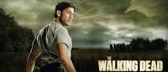 Image result for Walking Dead Shane