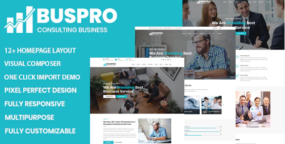 buspro business theme
