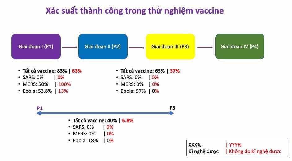 Xác suất thành công từ P1 đến P2, P2 đến P3, và P1  đến lúc được phê chuẩn. Số màu đen là nghiên cứu do kĩ nghệ dược bảo trợ, số màu đỏ là do chánh phủ & mạnh thường quân bảo trợ.   Xác suất thành công là gần 40% cho các vaccine do kĩ nghệ dược bảo trợ. Tỉ lệ này do chánh phủ và tổ chức từ thiện bảo trợ chỉ 6.8%.