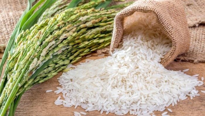 انواع برنج ایرانی و خارجی