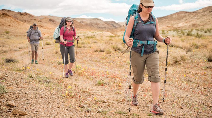6 ไม้เท้าเดินป่า คุณภาพยอดเยี่ยม ที่สายแคมป์ปิ้งมีไว้สำหรับพกพา!7