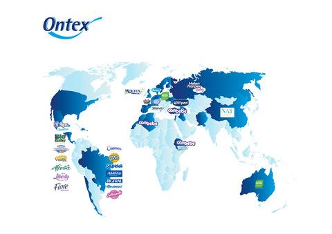 オンテックスの地域別事業展開の概要