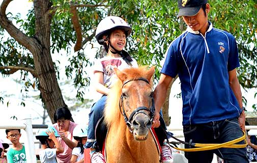 Pony rides are some of the great activities your kids can do at the Farm Resort