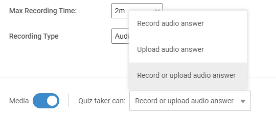 Customizing record audio interview question type