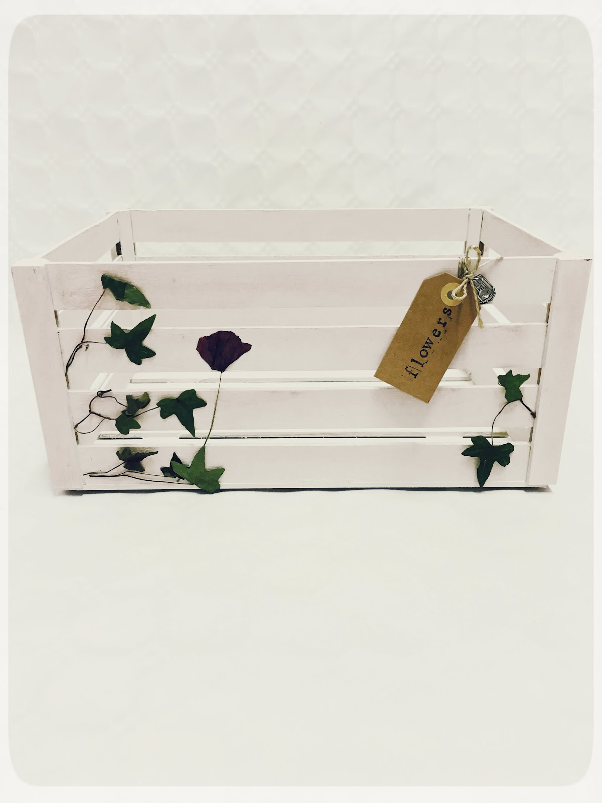 REinventa12_caja botanical d.jpg
