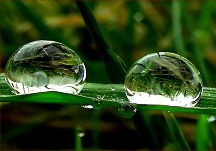 dos-gotas-de-agua.jpg
