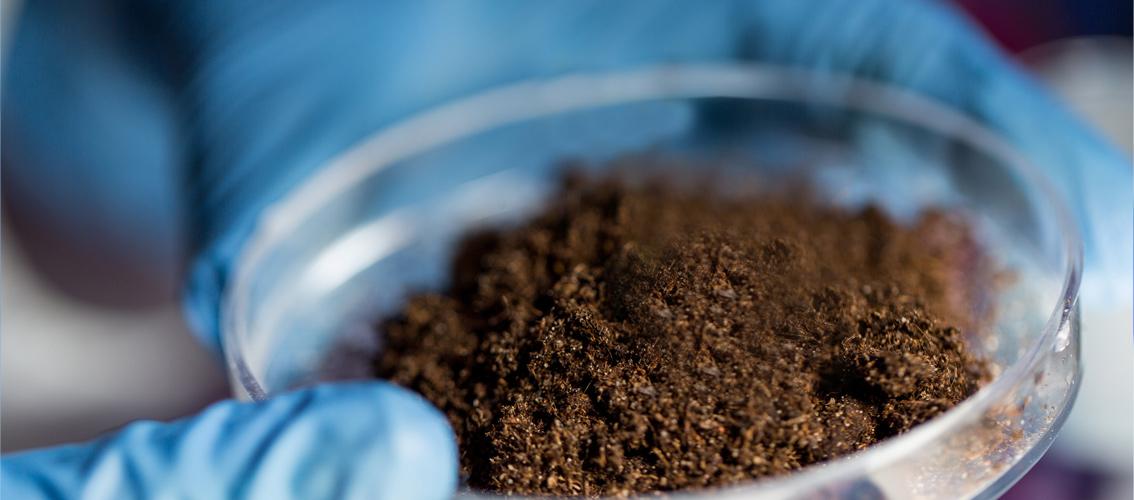 Агрохімічне обстеження ґрунтів - важлива ланка землеробства