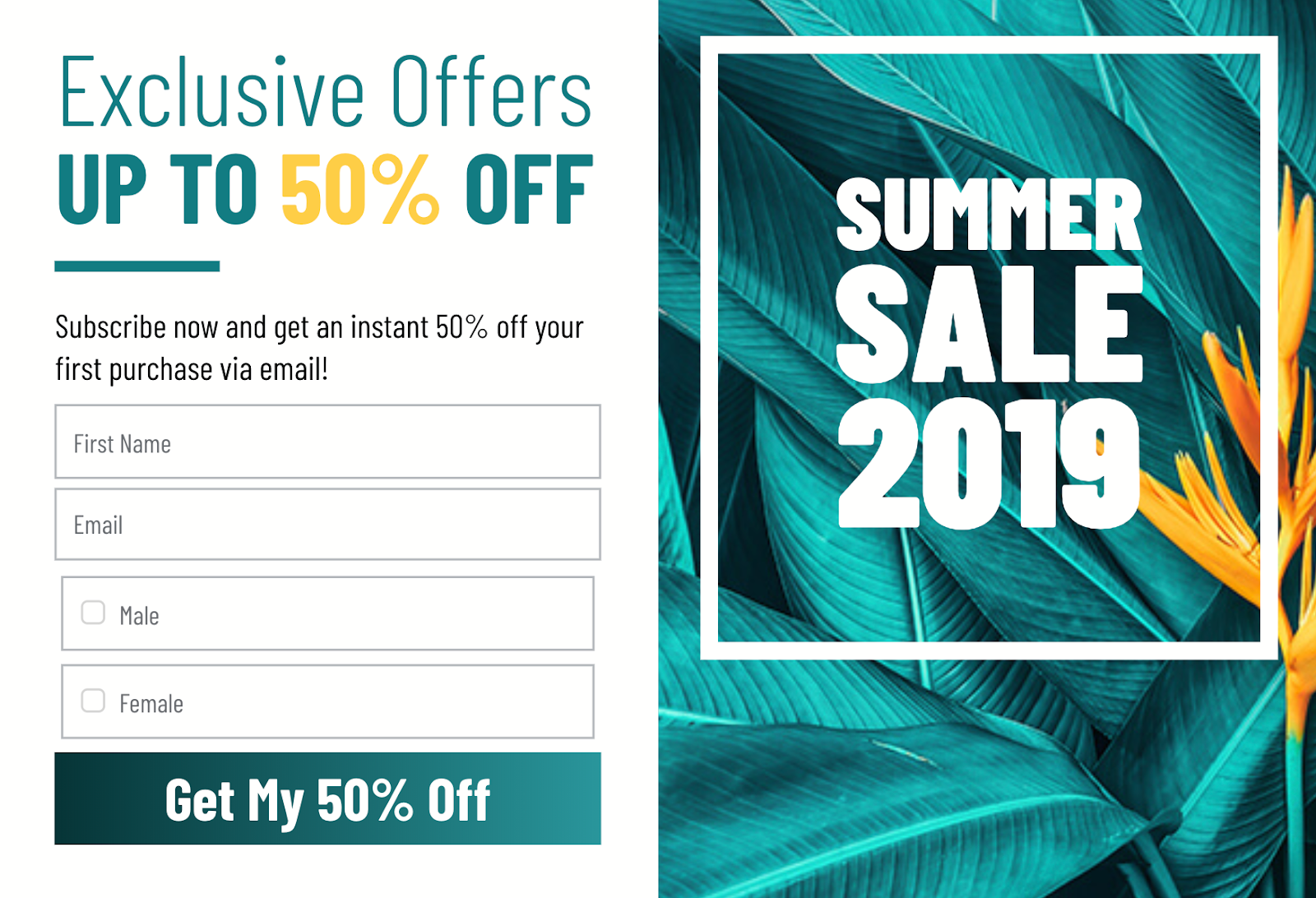 Summer Sale 2019 exclusive offer email design