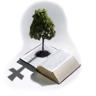 http://www.bereabaptist.org/images/406_Bible_Tree.png