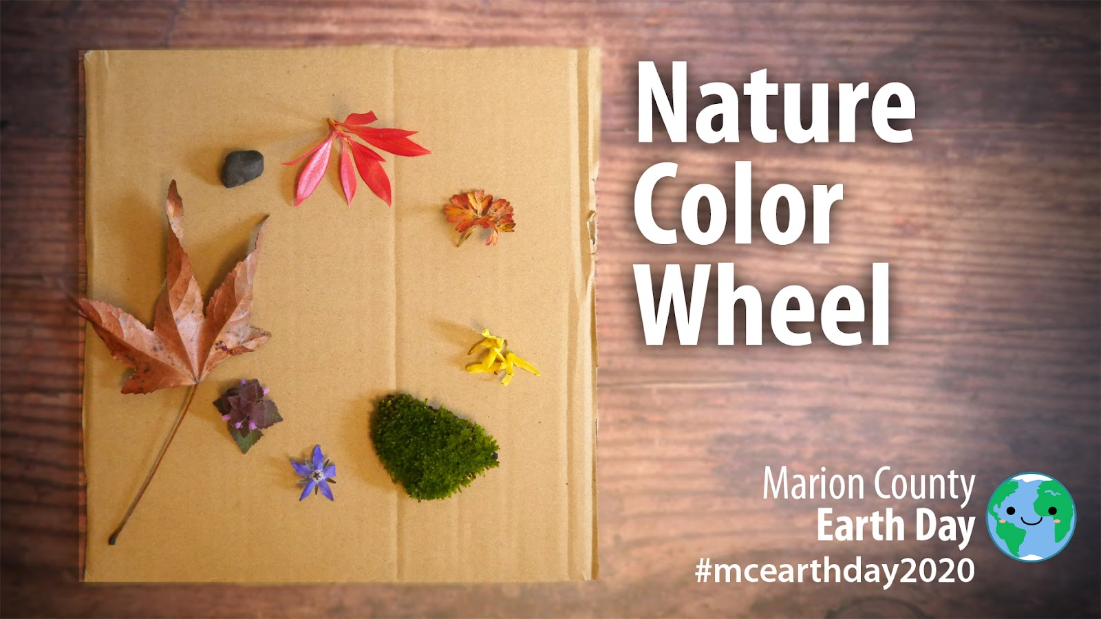 Color Wheel Challenge