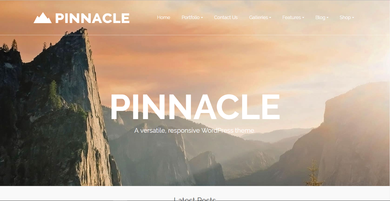 template wrodpress company profile pinnacle