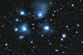 Image result for matariki acrostic poem