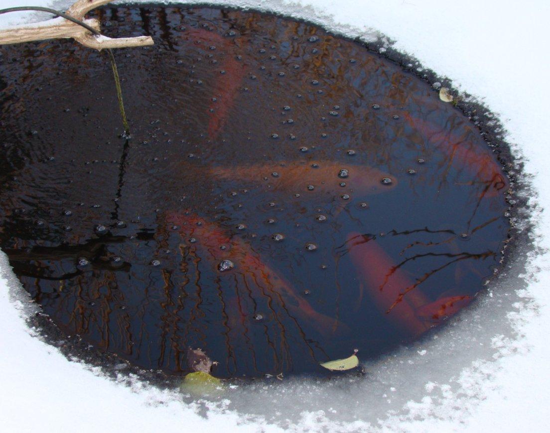 podgotovka-vodoema-k-zime-5