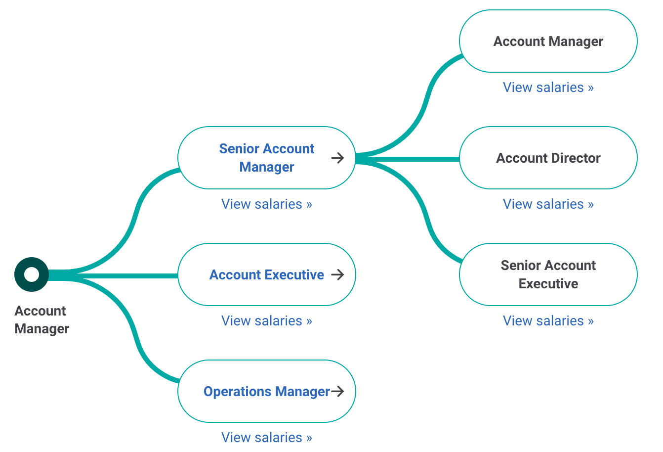 Account Manager career path
