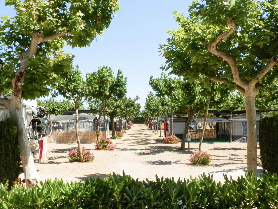Tree-lined avenues and flowerbeds provide privacy for RV's and camping trailers at Camping Clará