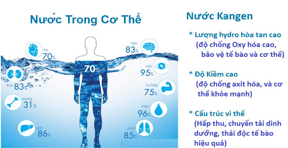 Máy-lọc-nước-Kangen-tạo-ra-nguồn-nước-tốt-cho-sức-khỏe-con-người