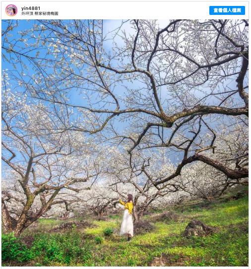 2021新春假期 到南投著名景點 蔡家秘境梅園走春