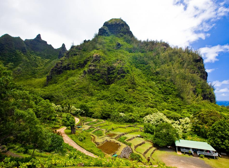 Limahuli Garden in Kauai