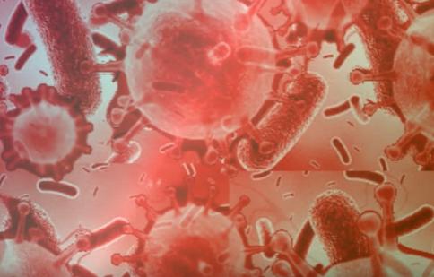 bacteria anaerobic and aerobic