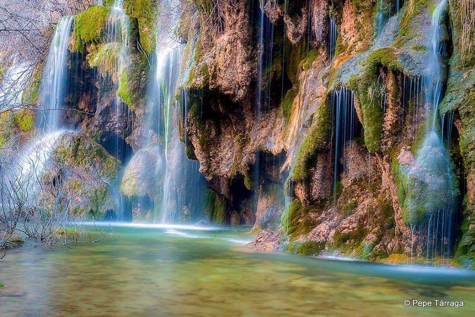 La imagen puede contener: planta, exterior, naturaleza y agua