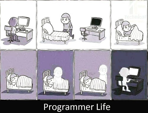 Life of a software developer