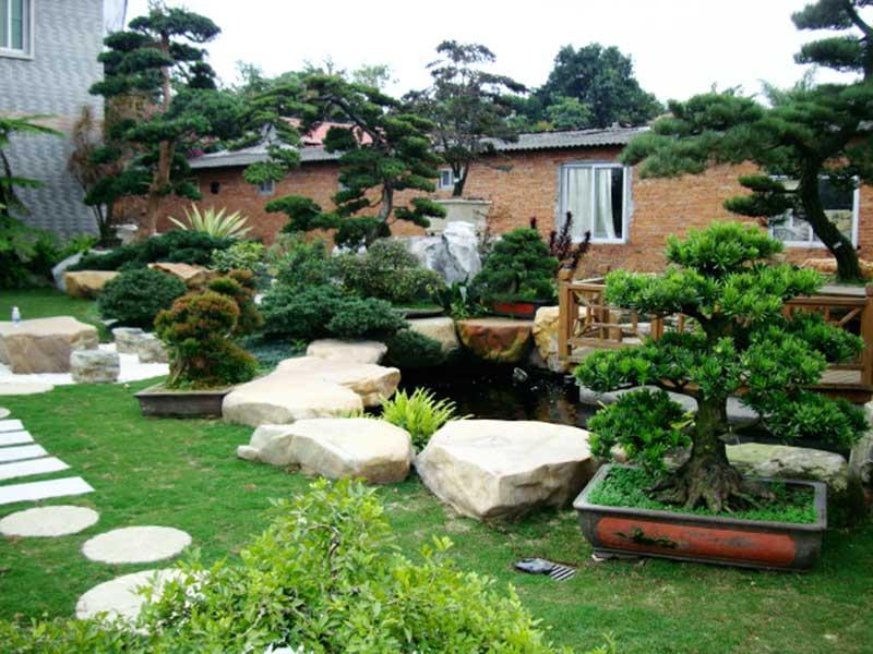 Thiết kế tiểu cảnh sân vườn mang vẻ đẹp tự nhiên