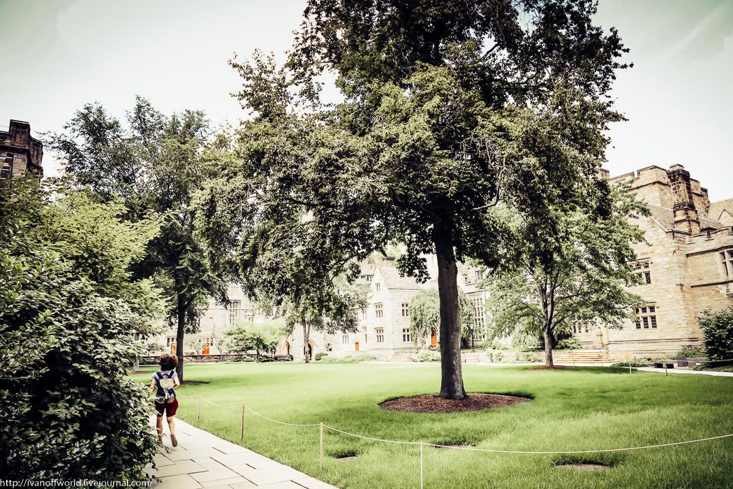 Конфуз в Йельском университете или тайны Йельского двора IMG_5959.jpg
