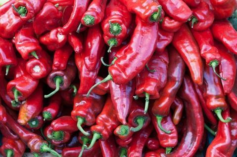 Resultat d'imatges de chili peppers