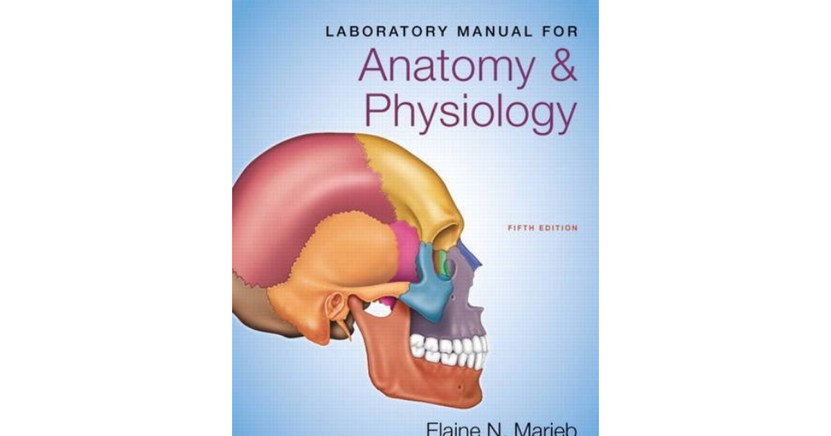 Nett Lab Manual Anatomy And Physiology Galerie - Menschliche ...