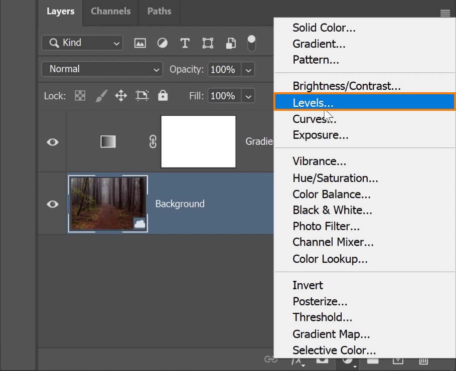 Go to the Layers panel > New Adjustment Layer icon > Levels