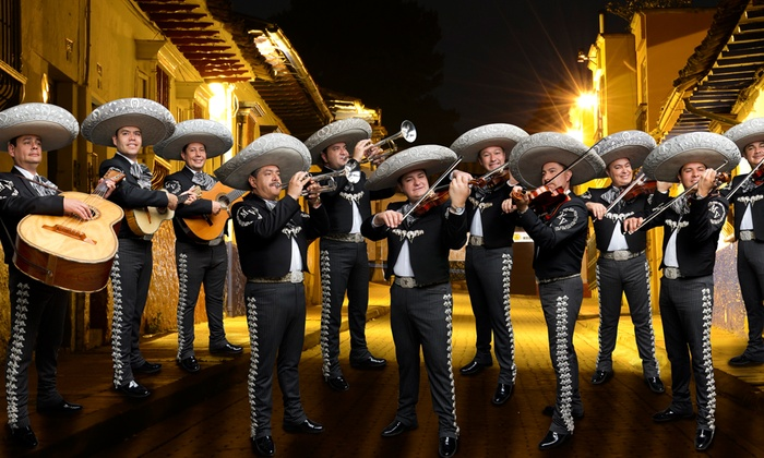 Image result for mariachi vargas