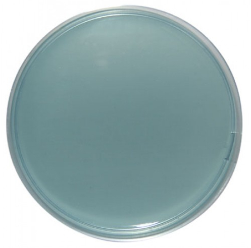 Uninoculated Cled agar