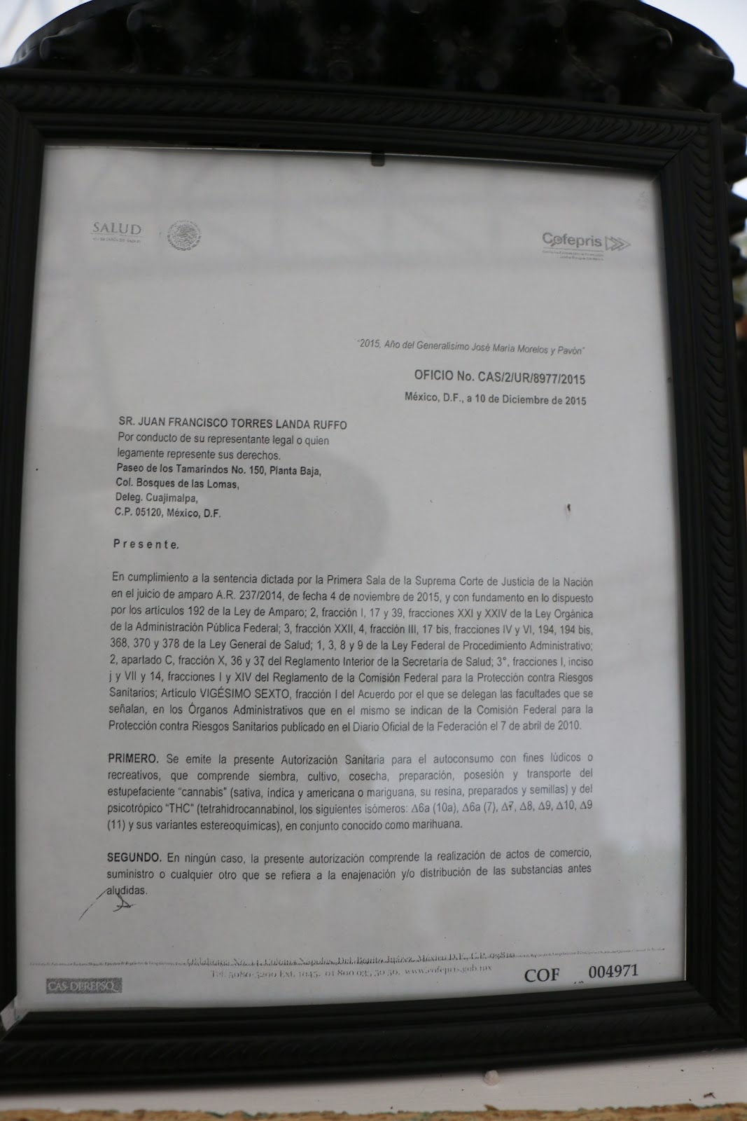 Documento, del Lic. Francisco Torres Landa de la asociación SMART,que ampara su cultivo, portación y consumo.