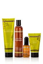 https://www.mydoterra.com/ShoppingCart/LNG/ENG/HairCareSystem_Detail_US_WEB_v1.jpg