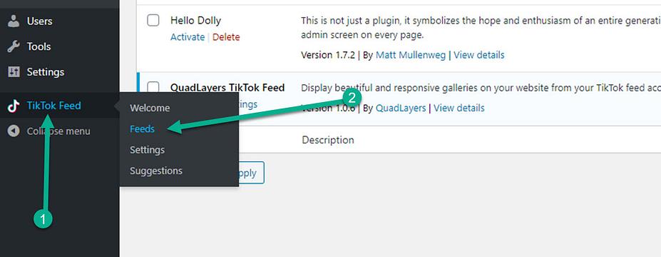 chuyển đến TikTok nguồn cấp dữ liệu WordPress