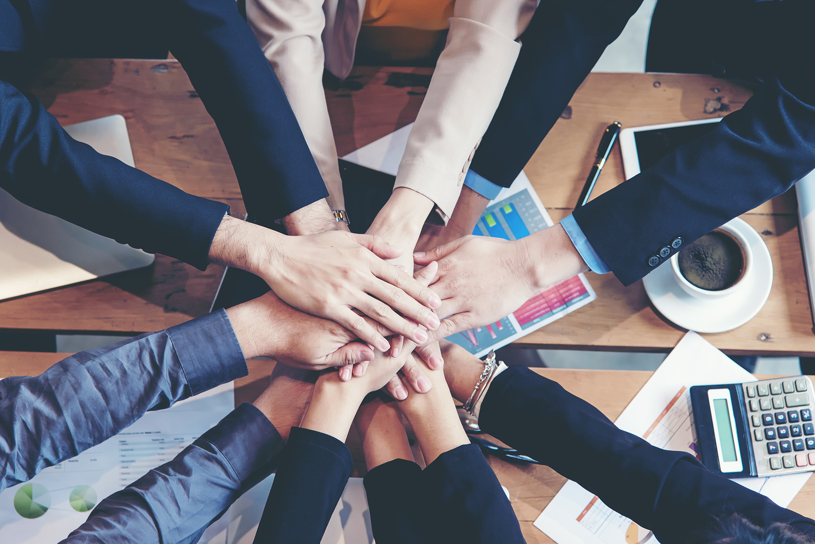 Several team member's hands and arms stacked on each other to show comradery.