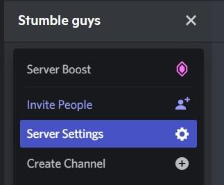 Server Settings option