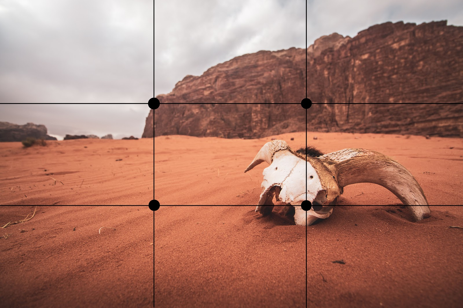 the rule of thirds of a desert