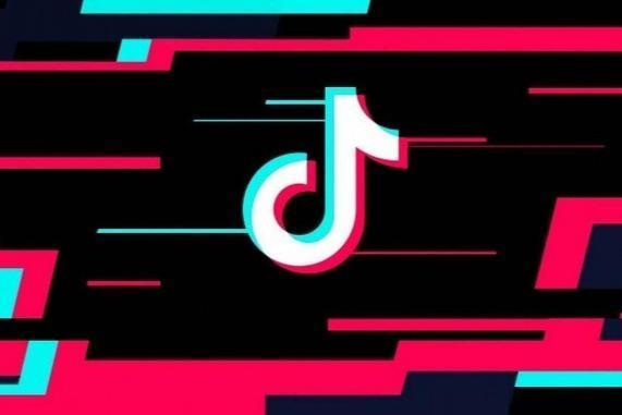 Find Out Who Are the 10 Most Followed Profiles on TikTok and Why They Became Famous