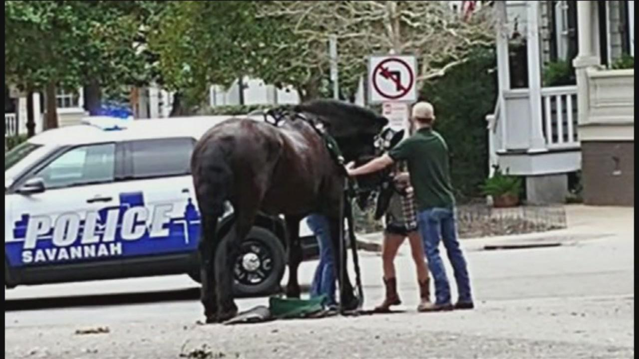 POLICE CHASING A THIEF ON STREETS OF NEW YORK CITY HORSES ...
