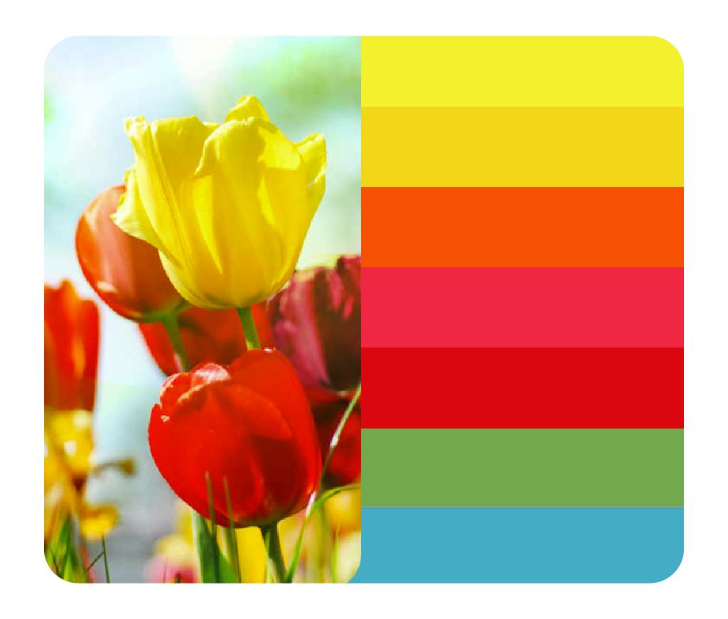 As cores da Primavera Pura
