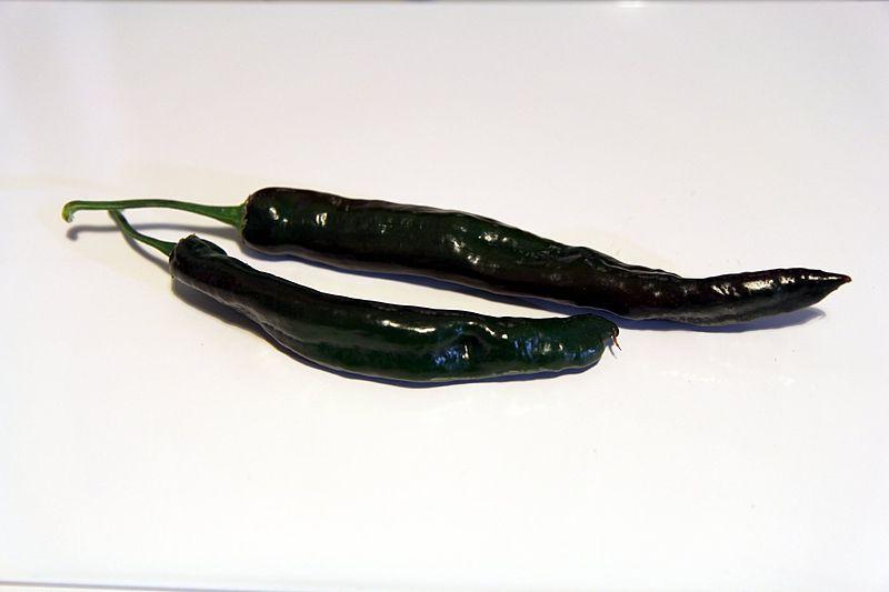 chilaca chillies