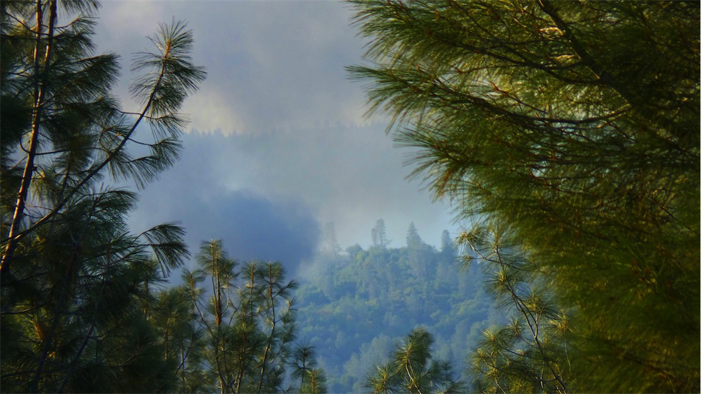 Aloha Fire 3.jpg