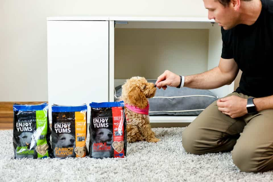 daily mom parent portal omlet dog products 14